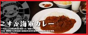 横須賀カレーグランプリ 海上自衛隊 こんごう あしがら 試食の値段